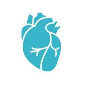 cardiovasculares_enfermedades_corazon_helpify_investigacion