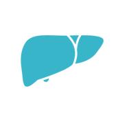 epaticas_enfermedades_corazon_helpify_investigacion
