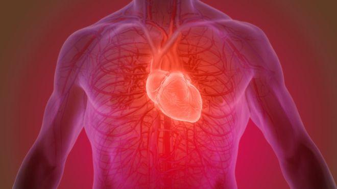 Avances en la investigación sobre insuficiencia cardíaca