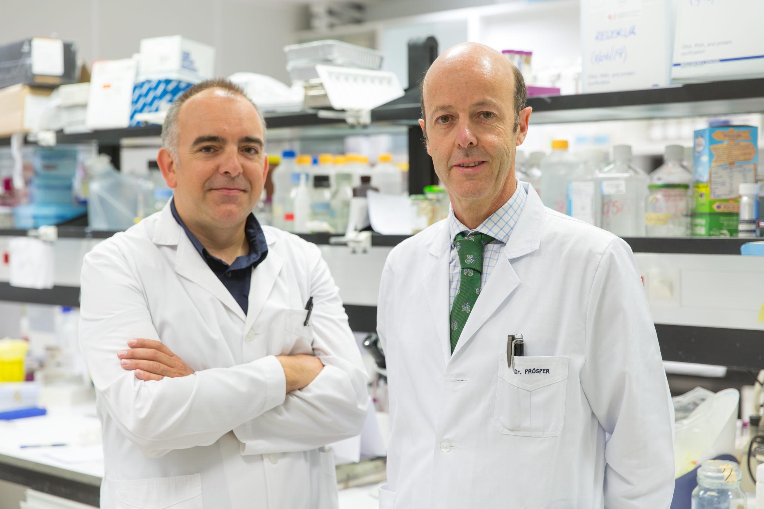 Logran revertir la pérdida ósea asociada al mieloma múltiple y reducir su carga tumoral en ratones